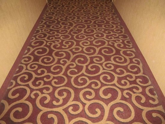 Hampton Inn & Suites Norfolk-Airport : Hall rug...clean/attractive