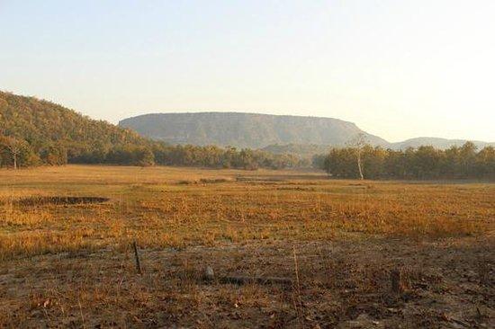 Infinity Resort Bandhavgarh:                   Vista seen in Magadhi zone