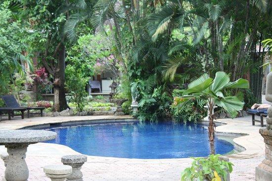 Rambutan Boutique Hotel: Petite piscine