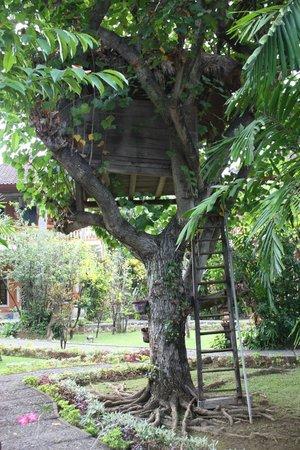 Rambutan Boutique Hotel : Cabane