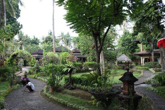 Rambutan Boutique Hotel : Jardin autour grande piscine