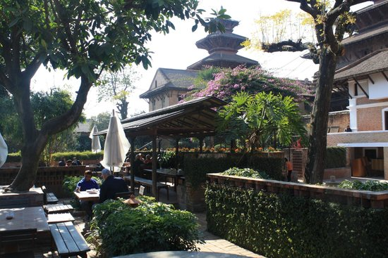 Museum Cafe :                   Modern garden setting in the middle of the Royal Palace museum