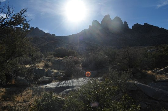 Aguirre Spring National Recreation Area:                   beautiful view of the organ mountains