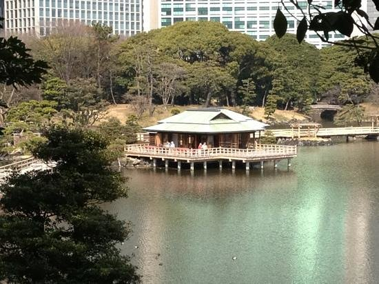 حدائق هاماريكيو: nakajima tea house