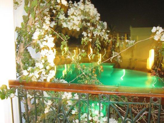 Melia Sinai: Вид из нашего номера, бассейн подогреваемый в зимний период