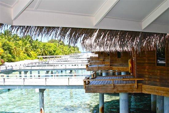 Kuramathi Island Resort: accesso alla camera