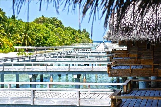 Kuramathi Island Resort: accesso ale camere
