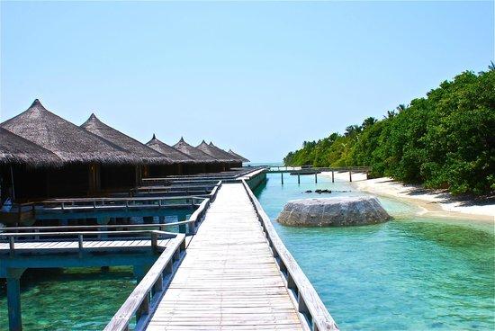 Kuramathi Island Resort: pontili