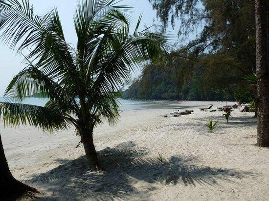 Koh Kood Neverland Beach Resort:                   beach                 