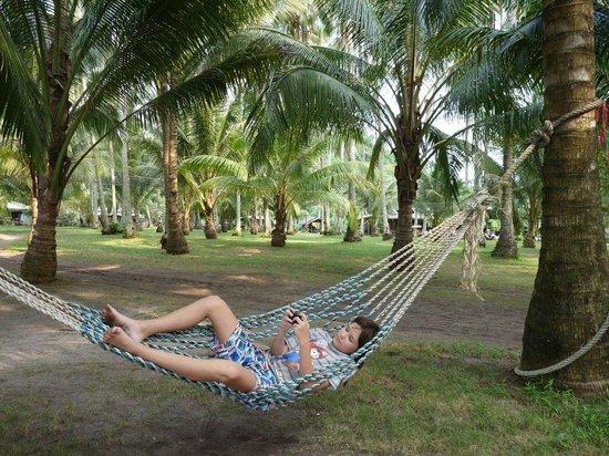 Neverland Beach Resort :                   relax