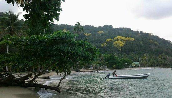 Paisasky: Baia di Sapzurro - Colombia