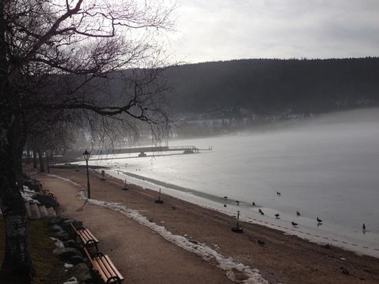 Parkhotel Waldeck: lake Titisee in early morning