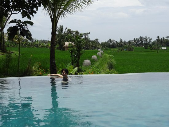 Kenanga Boutique Hotel:                   Pool