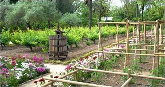 Jardin Botanico de Cordoba:                   Huerta