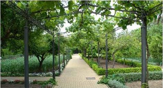 Jardin botanico de cordoba all you need to know before for Precio entrada jardin botanico madrid