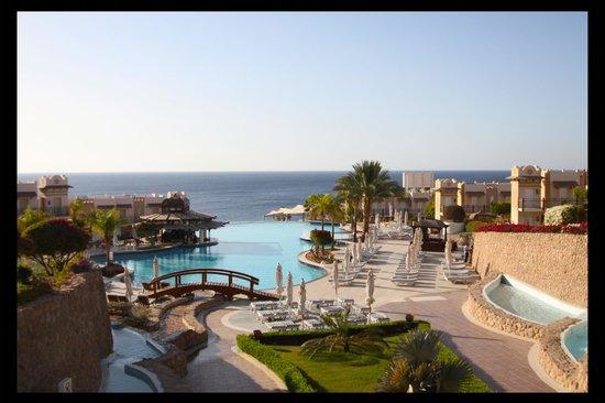 Concorde El Salam Front Hotel:                   infinity pool