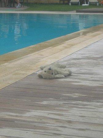 Corfu Mare Boutique Hotel: Bain de soleil pour ours en peluche