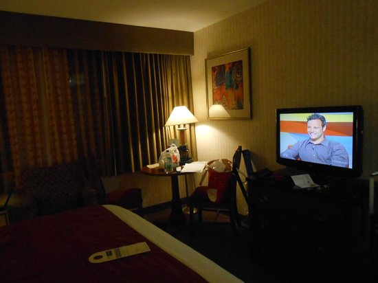 The Inn at Longwood Medical: Love the televison