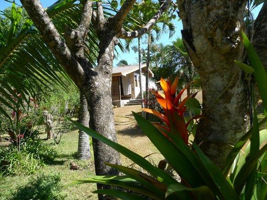 Quinta Don Fernando:                   garden view