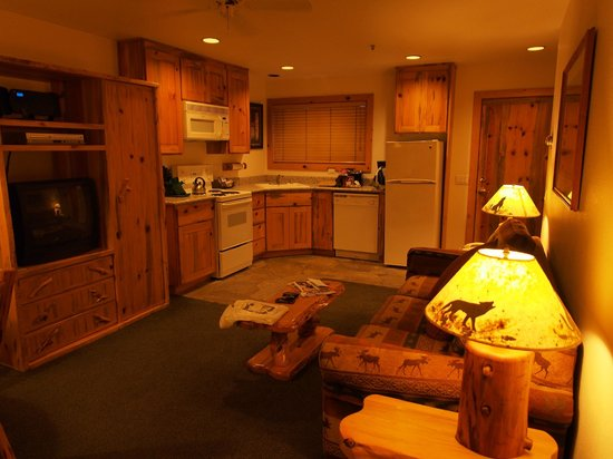 Red Wolf Lakeside Lodge: View of kitchen (part of living room)