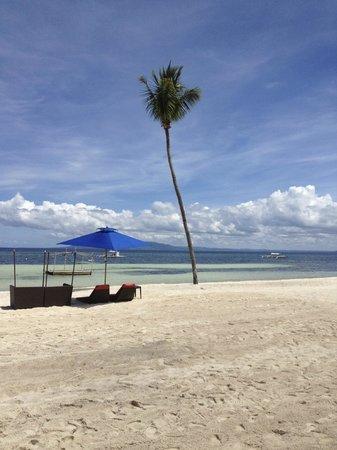 The Bellevue Resort Bohol:                   Private beach
