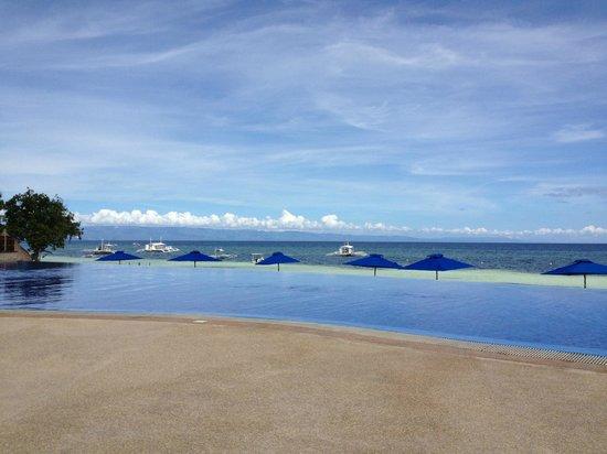 The Bellevue Resort Bohol:                   Infinity Pool