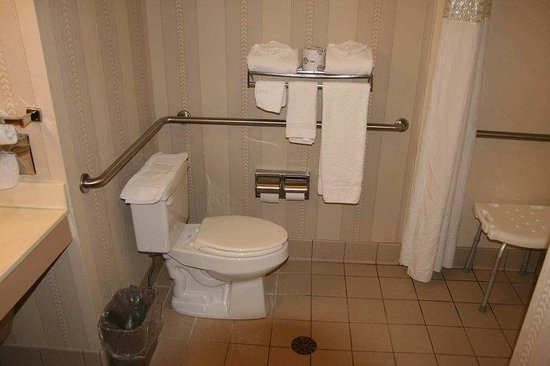 Hampton Inn Seekonk: Roll-in Shower