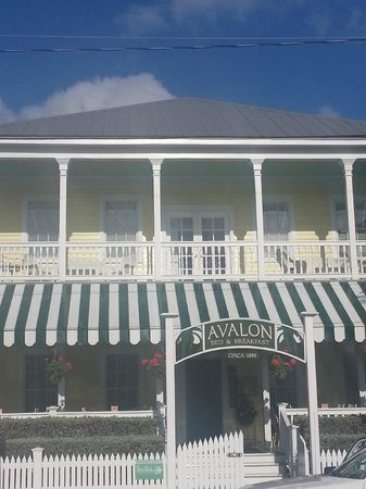 Avalon Bed and Breakfast:                   B & B Avalon Key West