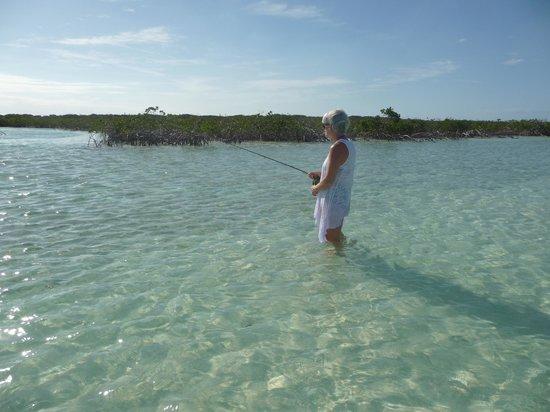 Fernandez Bay Village: Flyfishing in the creek at Fernandez Bay