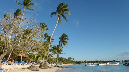 Dreams La Romana: la plage