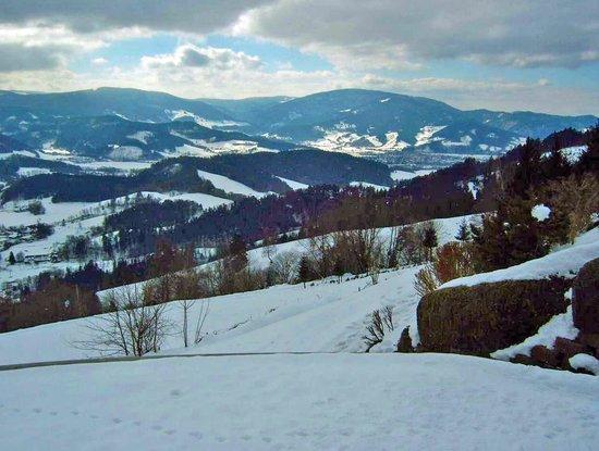 Gaestehaus Dold:                                     Black Forest hills from near Lindenberg