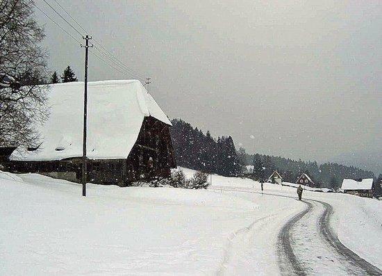 Gaestehaus Dold:                                     Farm house and barn in snow