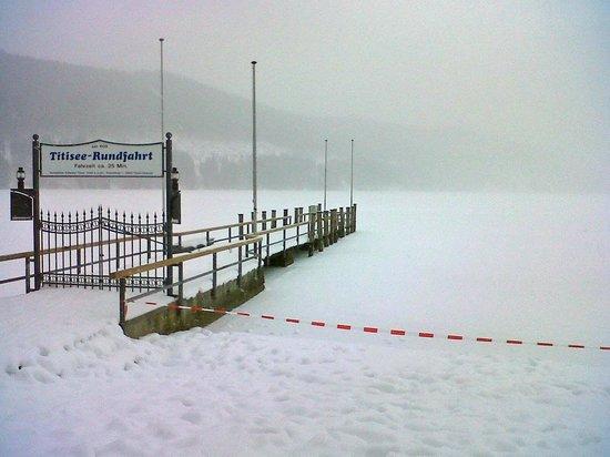Gaestehaus Dold:                                     Lake Titisee frozen over