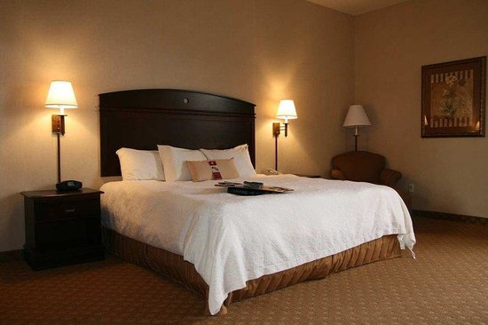 Hampton Inn & Suites Gallup: King Guest Room
