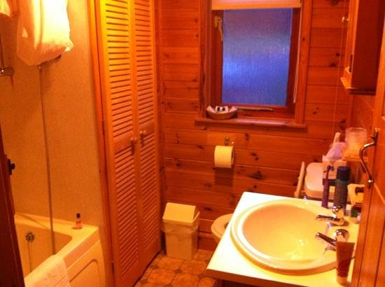 Abbot Hall Hotel :                   bathroom of 2 bed lodge