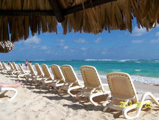 Majestic Elegance Punta Cana: 1