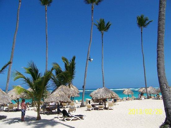 Majestic Elegance Punta Cana: 3