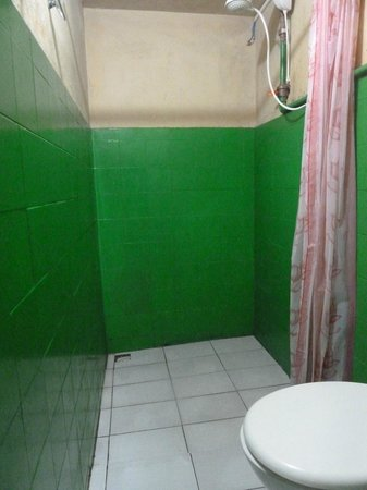GOL Backpackers Manaus: Private bathroom