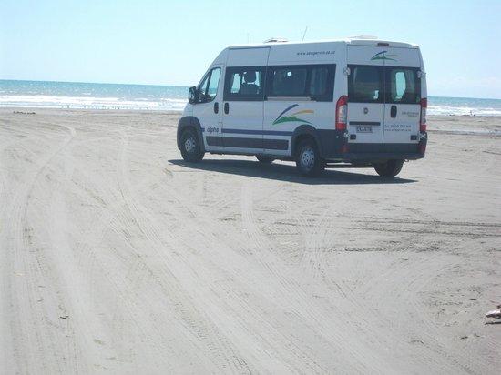 Himatangi Beach Holiday Park: away from evryone, alone on the beach