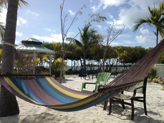 "MB at Key Largo: ""our"" double-wide hammock"