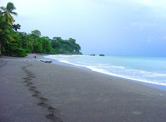 Casa Bambu Resort: Beach in front
