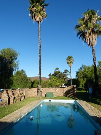 Frischgewaagd Guesthouse : Pool unter Palmen