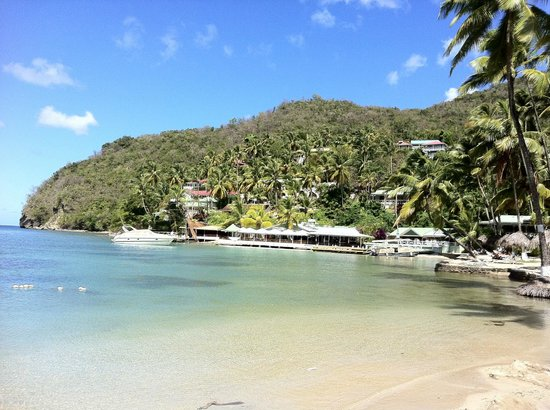 Marigot Beach Club and Dive Resort:                   Marigot Beach Club