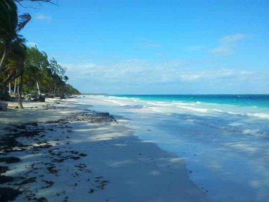 Hotel Las Golondrinas: playa paraiso presso biosfera di tulum