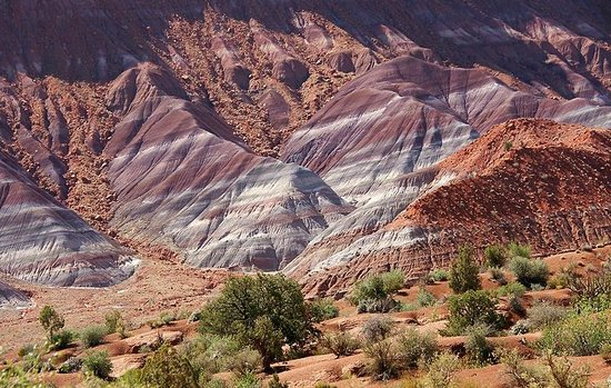 Paria River Canyon: Paria River Valley