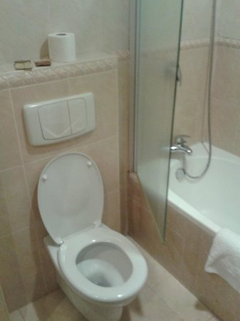 BON Hotel Abuja :                   Bathroom