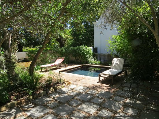 Akademie Street Boutique Hotel and Guest House : The private garden and plunge pool