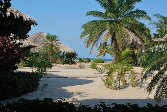 Jaguar Reef Lodge & Spa:                   View from our Ocean View cabana veranda
