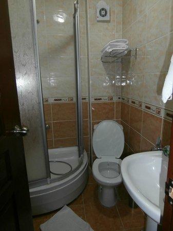 Boutique Dedem Hotel : WC