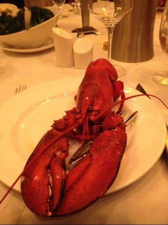 Eddie Merlot's Louisville : Whole Lobster